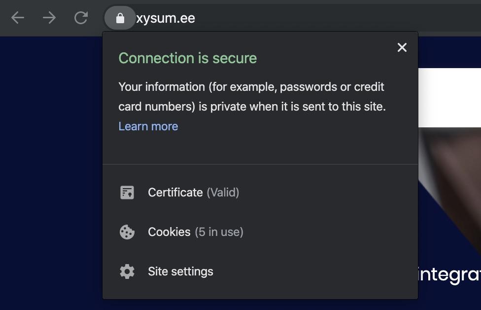 Kodulehe tegemine, SSL sertifikaat Google Chrome brauseris