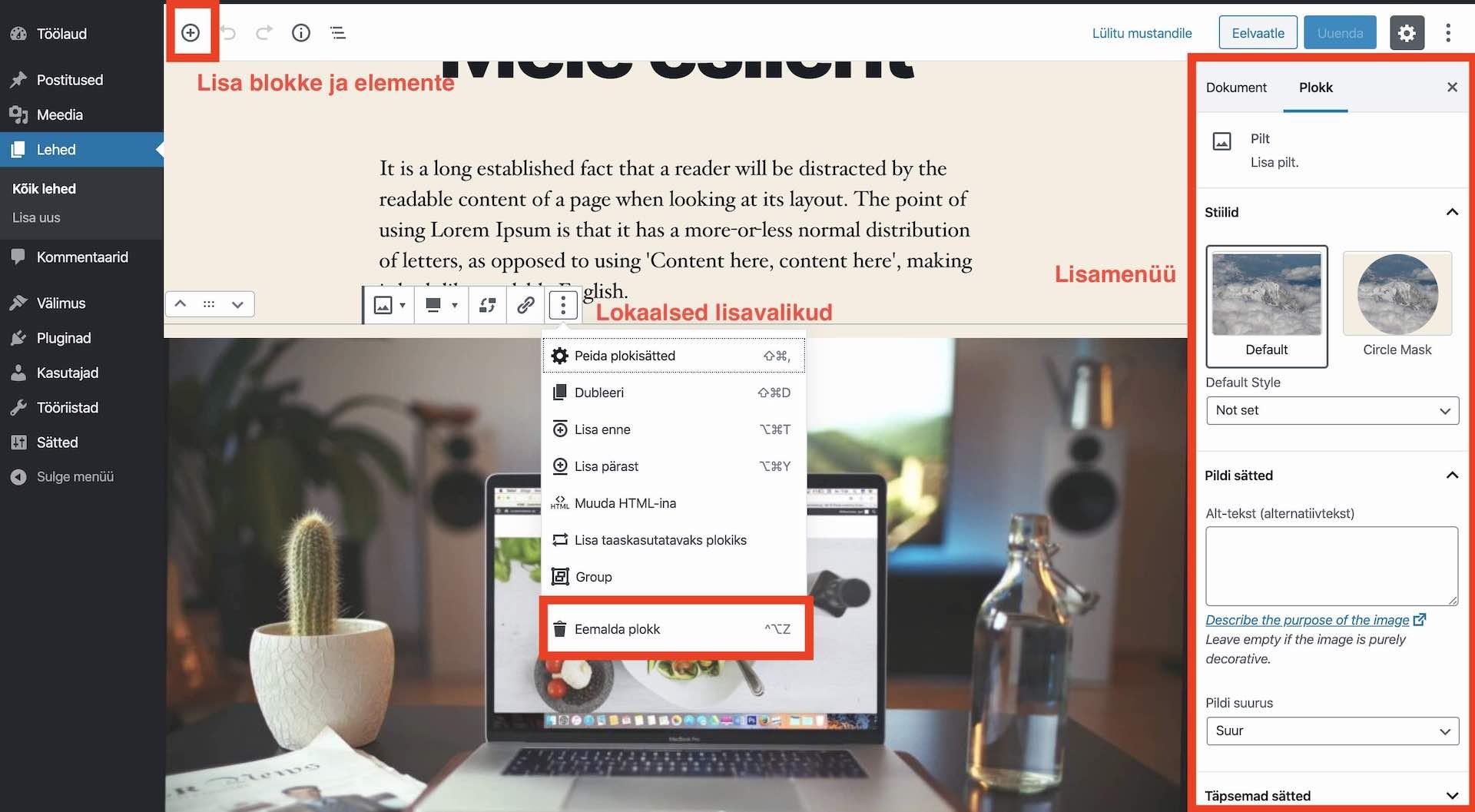 Kodulehe ehitamine, WordPress Gutenberg